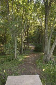 Anson B. Nixon Park, Main course, Hole 18 Short tee pad