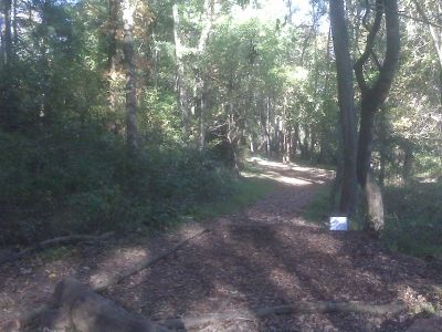 Anson B. Nixon Park, Main course, Hole 3 Long tee pad