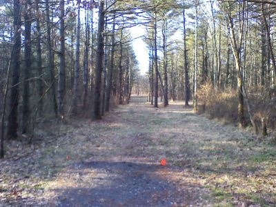 Gifford Pinchot State Park, Quaker's Challenge, Hole 6 Tee pad