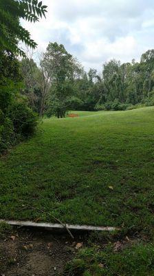 Monroeville Park, Main course, Hole 8 Tee pad