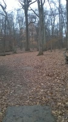 Tyler State Park, Main course, Hole 10 Short tee pad