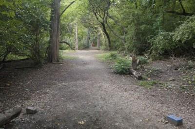 Sedgley Woods, Main course, Hole 12 Short tee pad