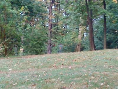 Schenley Park, Main course, Hole 7 Midrange approach