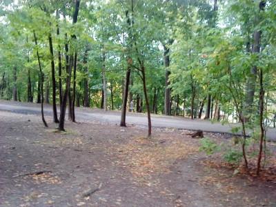 Schenley Park, Main course, Hole 10 Midrange approach