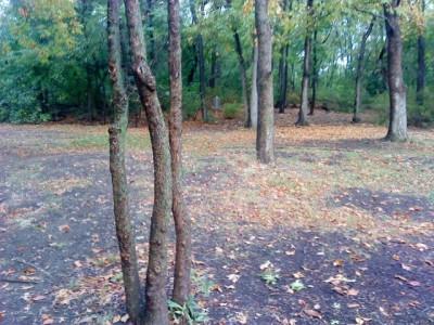 Schenley Park, Main course, Hole 6 Midrange approach