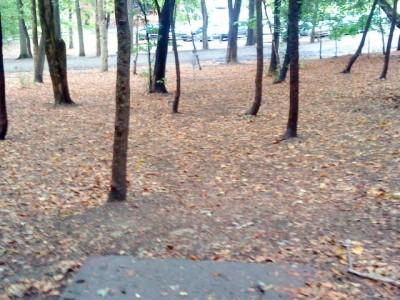 Schenley Park, Main course, Hole 16 Short tee pad