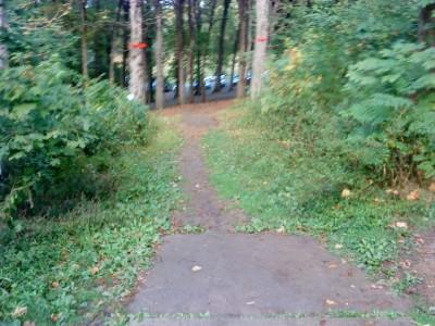 Schenley Park, Main course, Hole 8 Long tee pad