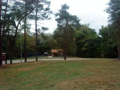 Schenley Park, Main course, Hole 3 Short approach
