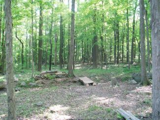 Nockamixon State Park, Main course, Hole 3 Long approach