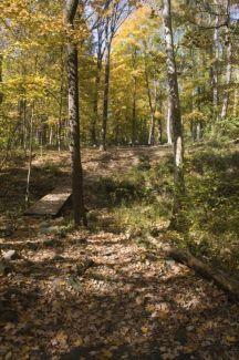 Nockamixon State Park, Main course, Hole 15 Tee pad