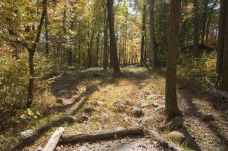 Nockamixon State Park, Main course, Hole 18 Tee pad