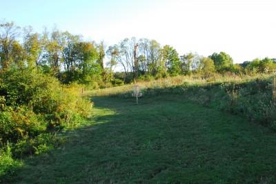 Circleville Park, Main course, Hole 4 Midrange approach