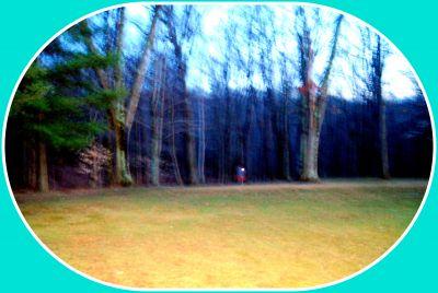 Deer Lakes Park, Main course, Hole 17 Short approach