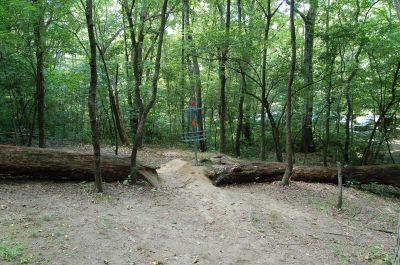 Knob Hill Park, Main course, Hole 14 Putt