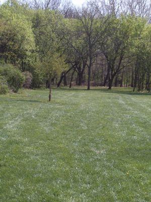 Jordan Creek Park, Main course, Hole 9 Midrange approach