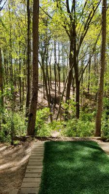 Richmond Hill, Main course, Hole 9 Tee pad