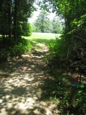 Cedarock Park, Cedarock, Hole 6 Long tee pad