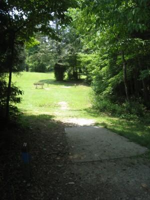Cedarock Park, Cedarock, Hole 11 Long tee pad