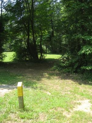 Cedarock Park, Cedarock, Hole 11 Short tee pad