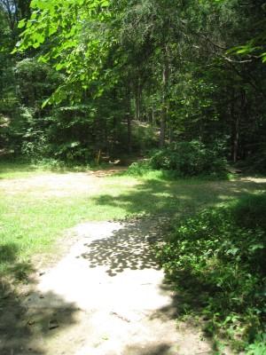 Cedarock Park, Wellspring , Hole 1 Long tee pad