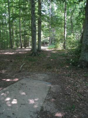 Cedarock Park, Wellspring , Hole 8 Long tee pad