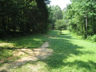 Cedarock Park, Wellspring , Hole 18 Short tee pad