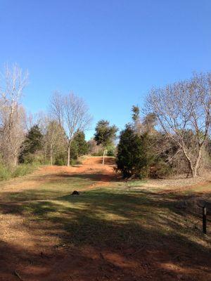 Renaissance Park, Main course, Hole 10 Long approach