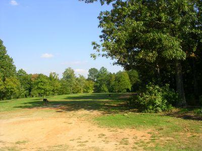Johnson Street Park, Main course, Hole 1 Middle tee pad