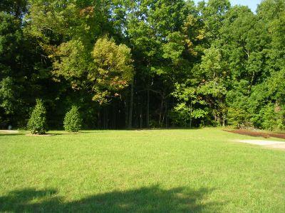Johnson Street Park, Main course, Hole 7 Middle tee pad