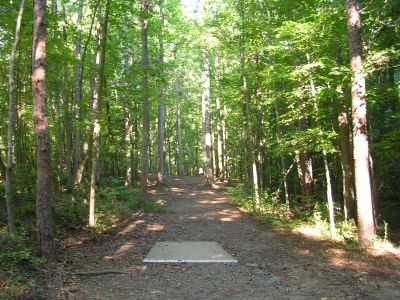 Johnson Street Park, Main course, Hole 11 Middle tee pad