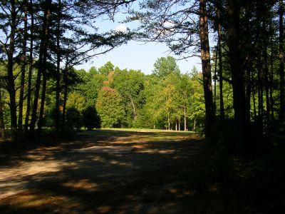 Johnson Street Park, Main course, Hole 6 Middle tee pad
