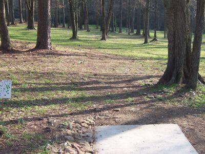 Civitan Park, John LeMaster Course, Hole 7 Tee pad