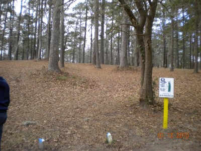 Glenburnie Park, Main course, Hole 6 Tee pad