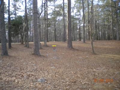 Glenburnie Park, Main course, Hole 4 Midrange approach
