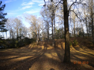 Glenburnie Park, Main course, Hole 5 Tee pad