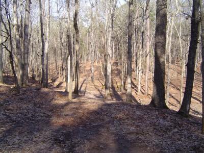 Buckhorn at Harris Lake County Park, Main course, Hole 3 Tee pad