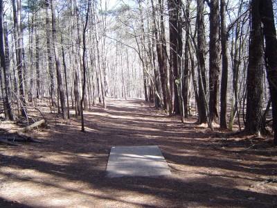 Buckhorn at Harris Lake County Park, Main course, Hole 14 Long tee pad