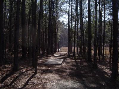 Buckhorn at Harris Lake County Park, Main course, Hole 9 Long tee pad