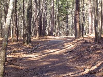 Buckhorn at Harris Lake County Park, Main course, Hole 5 Long tee pad