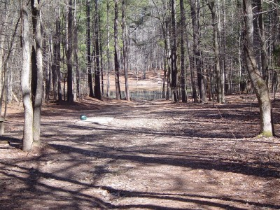 Buckhorn at Harris Lake County Park, Main course, Hole 17 Long tee pad