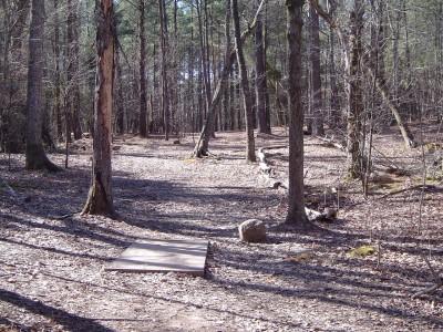 Buckhorn at Harris Lake County Park, Main course, Hole 13 Long tee pad
