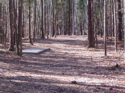 Buckhorn at Harris Lake County Park, Main course, Hole 7 Long tee pad