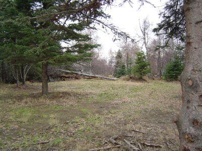 Kincaid Park, Main course, Hole 12 Short approach