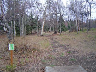 Kincaid Park, Main course, Hole 6 Tee pad