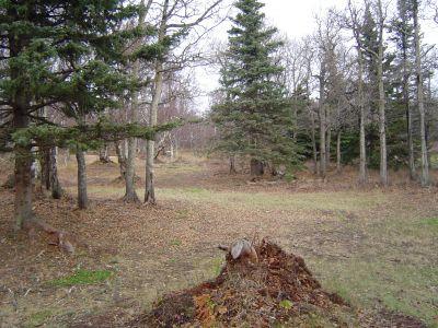 Kincaid Park, Main course, Hole 6 Midrange approach