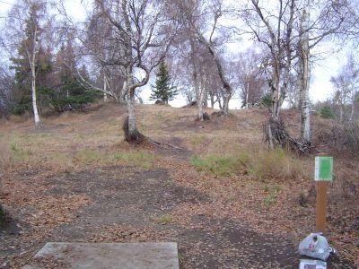 Kincaid Park, Main course, Hole 5 Tee pad