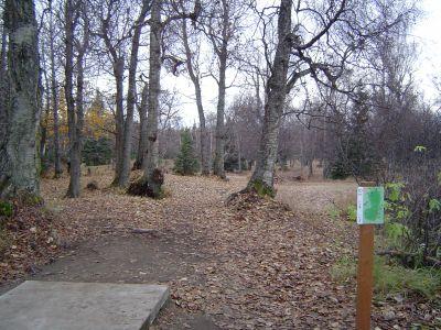 Kincaid Park, Main course, Hole 10 Tee pad