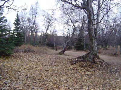 Kincaid Park, Main course, Hole 10 Long approach
