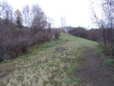 Kincaid Park, Main course, Hole 18 Midrange approach