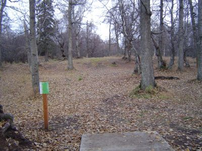 Kincaid Park, Main course, Hole 8 Tee pad